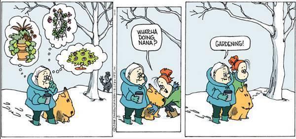 gardening-snow